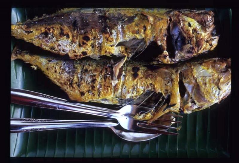 Gourmet Κουφονήσια: Η ζωή χορταίνει στο Πορί